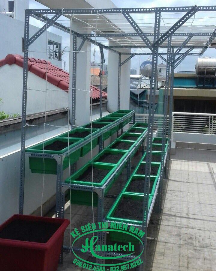 Kệ trồng rau TPHCM